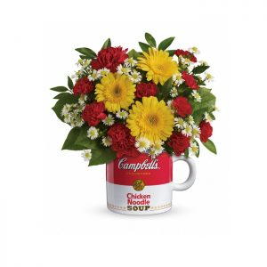 Campbells Healthy Wishes Standard