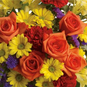 Silver spring florist florist in silver spring md hoover fisher designers choice birthday mightylinksfo