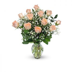 dozen peach roses in vase with baby's breath