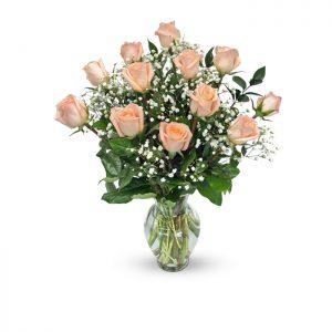 dozen peach roses in vase with baby's breath