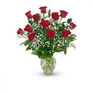 dozen red roses in vase with baby's breath