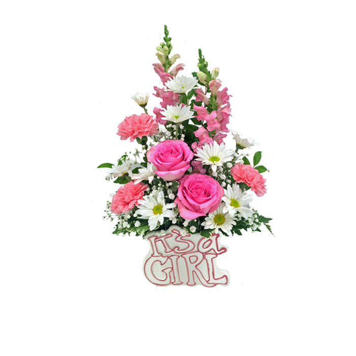 Silver spring flower shop silver springs 1 florist hoover its a girl mightylinksfo